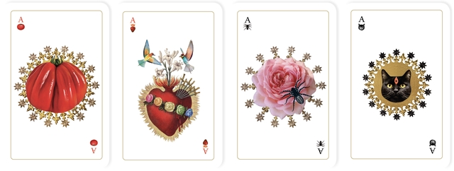 Cartes_chattes_station9_all_cards